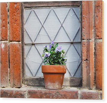 Window And Pots I Wood Print by Carl Jackson