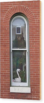 Wood Print featuring the photograph Window Dressing by Brian Wallace