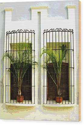 Window Ferns By Darian Day Wood Print by Mexicolors Art Photography
