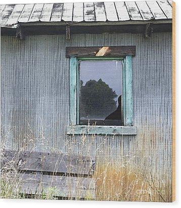 Window Framed In Aqua Wood Print by Glennis Siverson