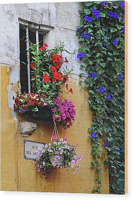 Window Garden In Arles France Wood Print by Dave Mills
