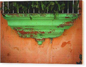 Window Ledge Wood Print by Shane Rees