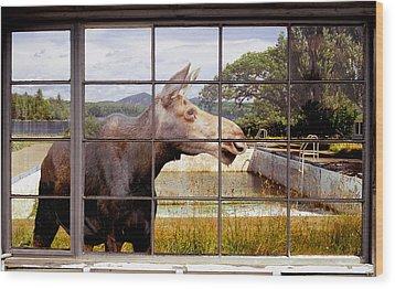Window - Moosehead Lake Wood Print