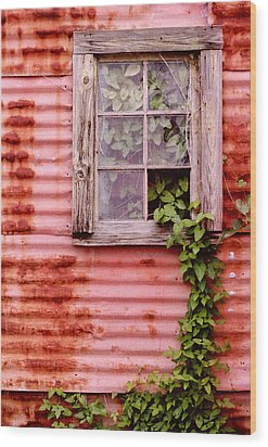 Window Of Ivy Wood Print