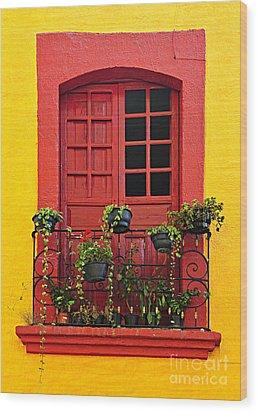 Window On Mexican House Wood Print by Elena Elisseeva