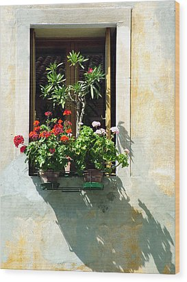 Window With A Tree Wood Print by Donna Corless