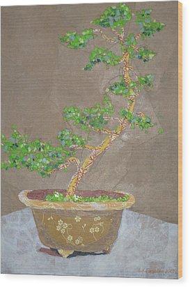 Windswept Juniper Wood Print by Leah  Tomaino