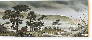 Windswept Shore Wood Print by James Williamson