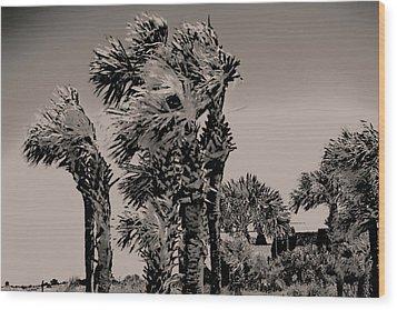 Windy Day At Beach Wood Print