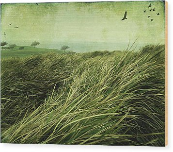 Wood Print featuring the digital art Windy Day On The Nut by Margaret Hormann Bfa