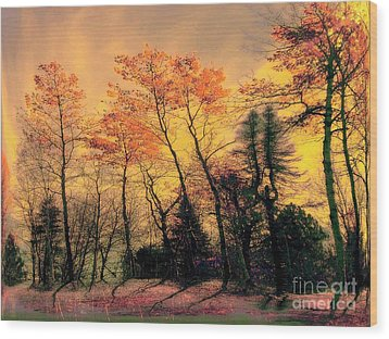Wood Print featuring the photograph Windy  by Elfriede Fulda