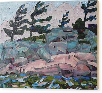 Windy Island Wood Print by Phil Chadwick