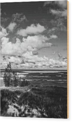 Wood Print featuring the photograph Windy Morning On Lake Michigan by Michelle Calkins