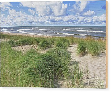 Windy Shoreline Wood Print by Kathi Mirto