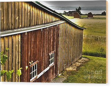 Wine Barn Wood Print by William Norton