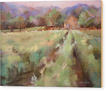 Wine Country 2 Wood Print by Joan  Jones