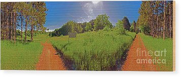 Wingate Prairie Wood Print