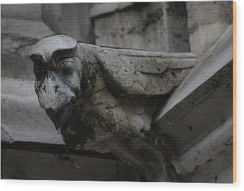Wood Print featuring the photograph Winged Gargoyle by Christopher Kirby