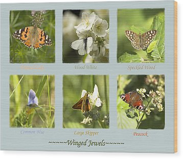Winged Jewels Wood Print by Hazy Apple