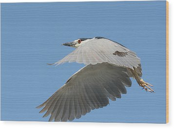 Wings Of Fancy Wood Print by Fraida Gutovich