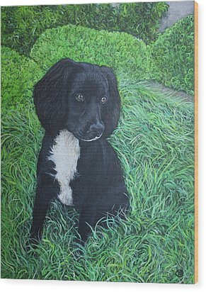 Wood Print featuring the painting Winnie by Tom Roderick