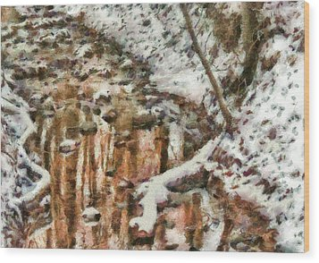 Winter - Natures Harmony Painted Wood Print by Mike Savad