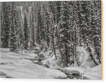 Winter Alpine Creek II Wood Print by Brad Allen Fine Art