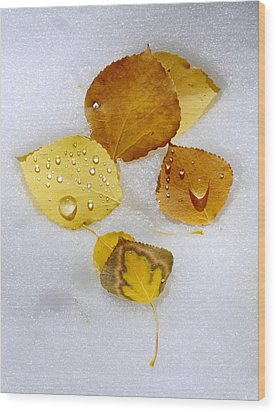 Winter And Fall Collide Wood Print
