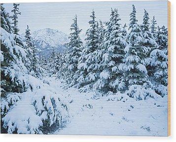 Winter Arrives Wood Print