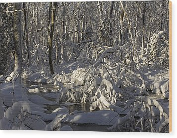 Winter At Borden Brook Wood Print