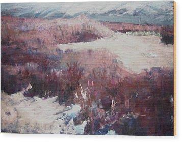 Winter At Fish Slough Iv Wood Print by Anita Stoll