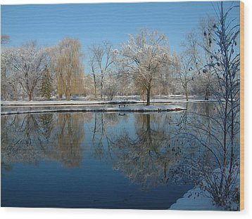 Winter At Hidden Lakes Wood Print by Gregory Jeffries