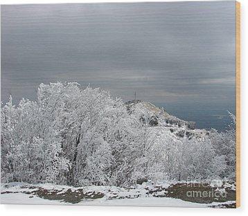 Winter At Shipka Wood Print