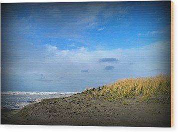 Winter Beach Wood Print by Mg Blackstock