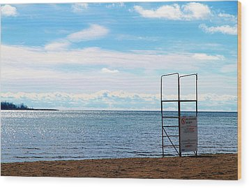 Wood Print featuring the photograph Winter Beach by Valentino Visentini