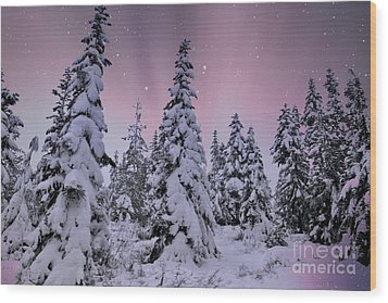 Winter Beauty Wood Print by Sheila Ping