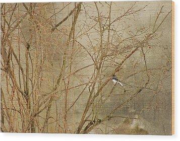 Winter Bird At The Audubon Wood Print