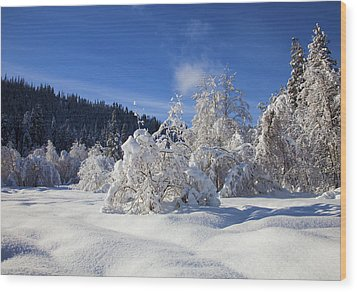 Winter Blanket Wood Print by Mike  Dawson