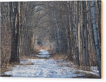 Winter Bliss Wood Print