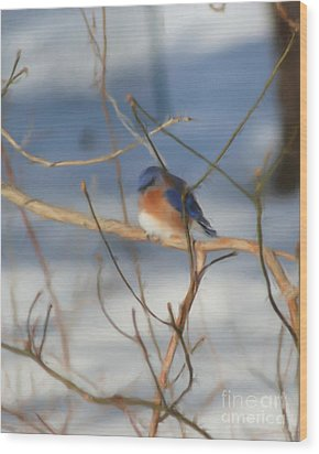 Wood Print featuring the painting Winter Bluebird Art by Smilin Eyes  Treasures