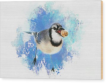 Wood Print featuring the photograph Winter Bluejay by Darren Fisher