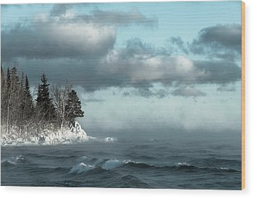 Wood Print featuring the photograph Winter Blues by Mary Amerman