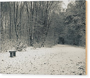Winter Bridleway Wood Print by Andy Smy