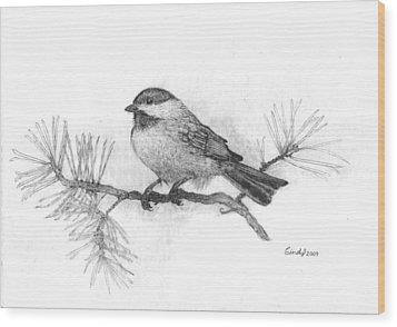 Winter Chickadee Wood Print by Cynthia  Lanka