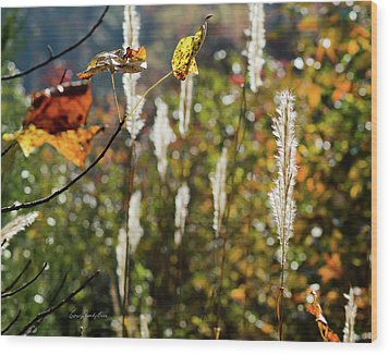 Winter Color Wood Print by George Randy Bass