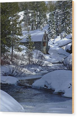 Winter Cottage Wood Print by Donna Blackhall