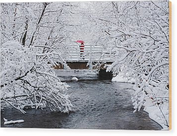 Winter Crossing Wood Print by Ron Day