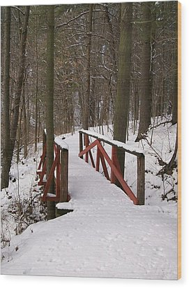 Wood Print featuring the photograph Winter Crossing by Sara  Raber