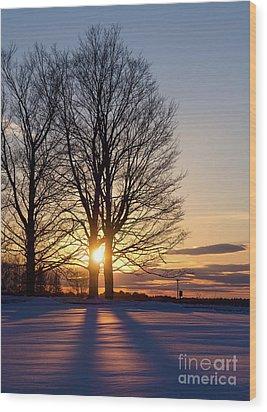 Winter, Crystal Spring Farm, Brunswick, Maine -78592 Wood Print