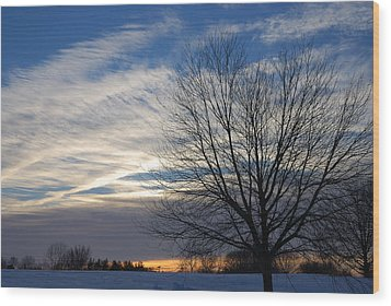 Wood Print featuring the photograph Winter Dawn by Steven Richman